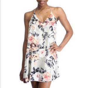 Abbeline Velvet Burnout mini dress